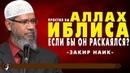 Закир Наик Простил бы Аллах Иблиса если бы он раскаялся