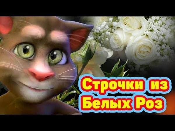 Замечательная песня 💋 Строчки из Белых Роз 💋 Вспомним Юность ❤️ почти Ласковый Май ❤️
