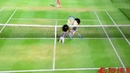 Playing super long volley in Wii tennis