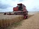 ДОН 1500 уборка пшеницы [DON 1500 wheat harvest]