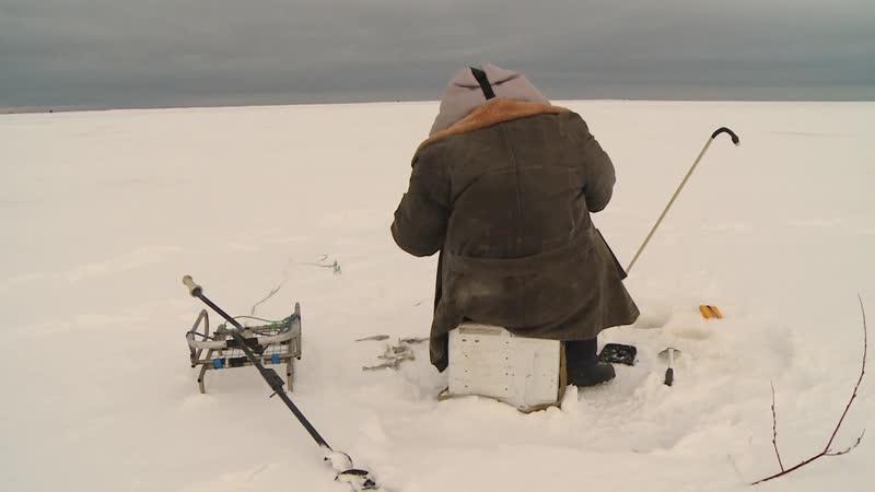 Запрет на улов
