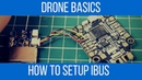 How to wire and setup flysky Ibus in betaflight Under 5 Minutes