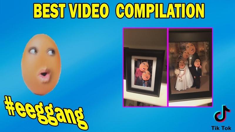 Funny Tik Tok MEME Compilation Best TIK TOK VIDEOS[1](Подборка Тик ток)EGGGANG