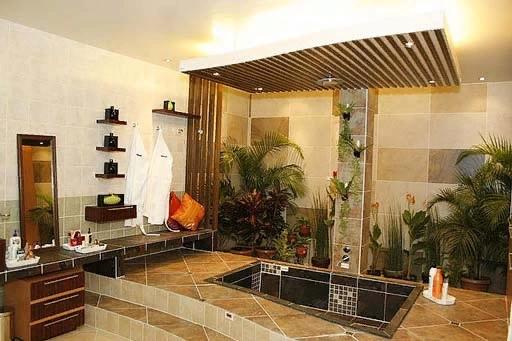 Стили интерьера и комнатные растения