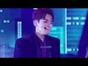 Super Junior - Animals Live Perf