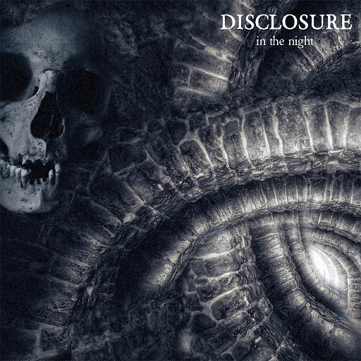 Disclosure альбом In the Night