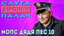 Мопс Дядя Пес 10. ДЖОННИ - Слуга Щадило.