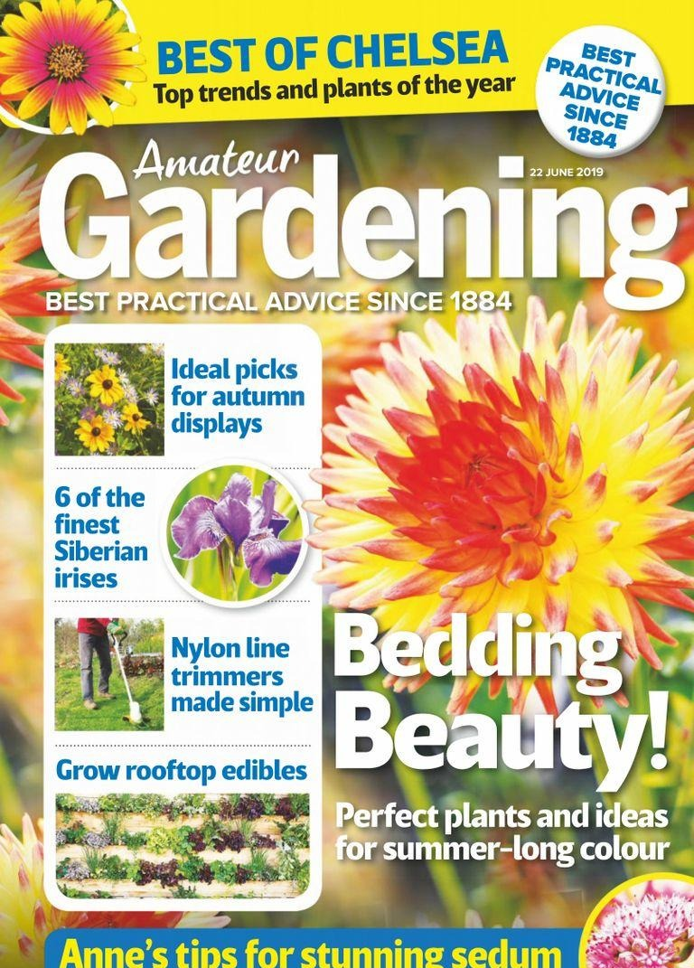 Amateur Gardening - 02 July 2019