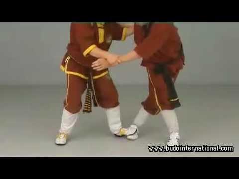 Weng Chun Kung Fu Andreas Hoffman
