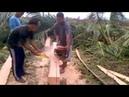 Amazing Primitive Cutting Coconut lumber - Splitting Wood Chainsaw