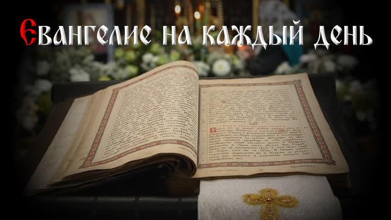Читаем Евангелие вместе с Церковью 24 июля 2019 г
