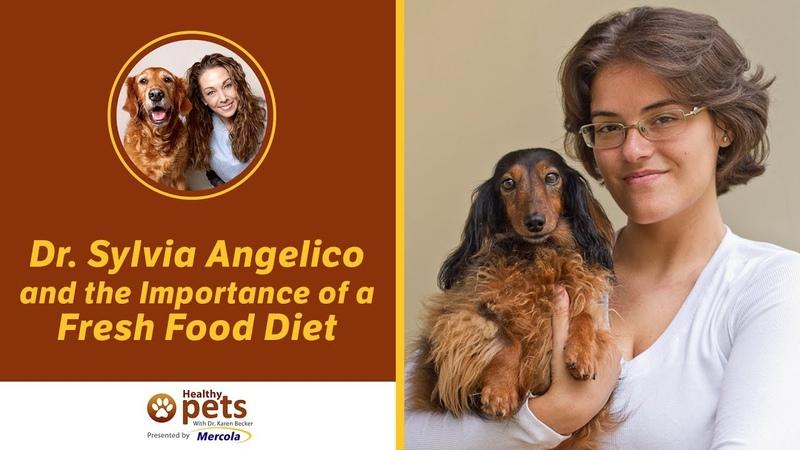 Важность диеты из свежих продуктов / Importance of a Fresh Food Diet