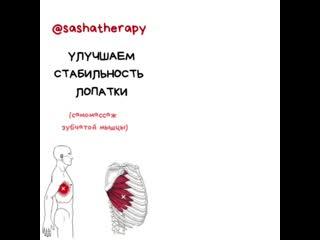VID_35850326_100524_733.mp4