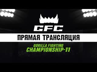 Gorilla fighting championship 11 пенза 3 мая