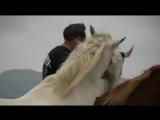 Шоу с лошадками на берегу