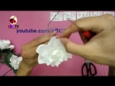 ABC TV _ How To Make Gardenia Paper Flower From Crepe Paper - Craft Tutorial.mp4