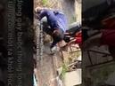 Taylandda toprak altında boru içinde çiftleşirken sıkışan dev kertenkeleler güçlükle kurtarıldı