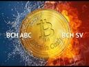 Bitcoin Cash ABC и Bitcoin Cash SV. Как удвоить Ваши Bitcoin Cash