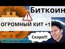 Биткоин ОГРОМНЫЙ КИТ 1 и TON Телеграм уже в третьем квартале