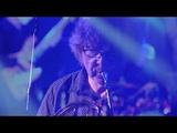 K O S M O N A V T Y feat. Arkady Shilkloper (Live at Kozlov Club)