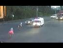 Две лошади прогуливались по Ярославлю и устроили ДТП