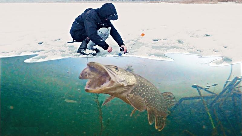 ВОТ ЭТО УЛЁТНАЯ РЫБАЛКА 2019 64 Рыбаки этого не забудут Рыбалка видео приколы Amazing Fishing 2019
