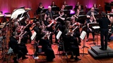 The Moldau. Bedrich Smetana. The Allegro Orchestra of Lancaster. Brian Norcross, Conductor.