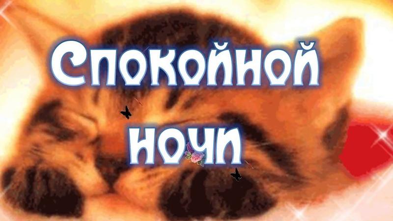 Спокойной Ночи Любимый Мой Видео Открытка Пожелание Спокойной Ночи Любимому