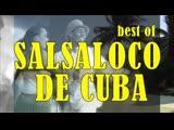 Best of Salsaloco De Cuba Salsa, Merengue, Bachata, Samba, Mambo, Baila Loco
