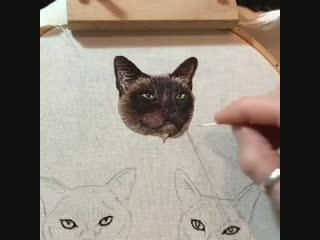 Вышитый котик