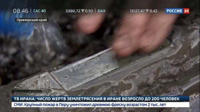 Новости на Россия 24 • Эхо войны: приморские поисковики подняли из болота самолет Пе-2