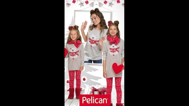 Pelican Winter 18-19
