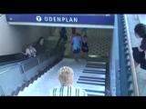 Уроки музыки в шведском метро интерактивная инсталляция
