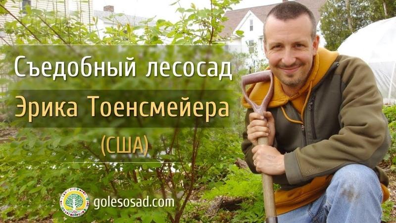 Съедобный лесосад Эрика Тоенсмейера