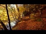 Фрэнк Синатра - Осенние листья...