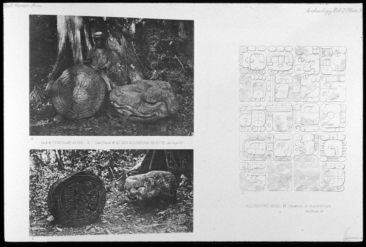 древние города майя