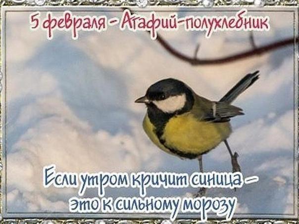 5 февраля Агафий полухлебник Дата по старому стилю: 23 января В этот день празднуются именины Агафангела. Это мужское имя греческого происхождения, означающее «Добрый вестник», на Руси носили