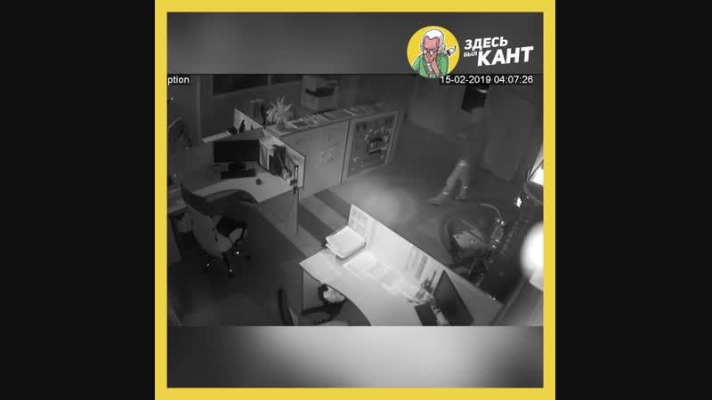 В Калининграде воры вынесли сейф из офиса Здесь был Кант kanthaus