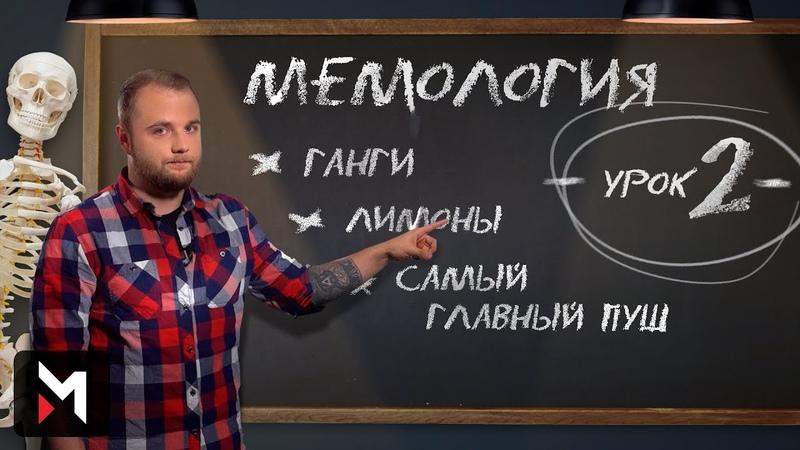 Мемология Ганги Лимоны и Самый Главный Пуш Урок Второй
