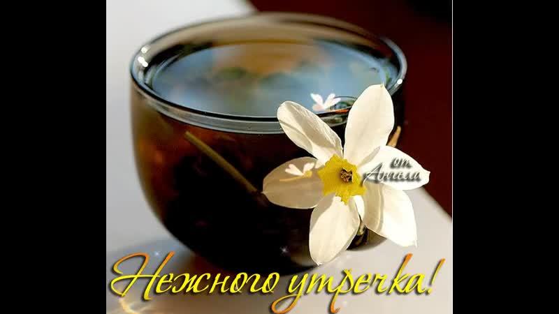 Doc276673719_502203405.mp4