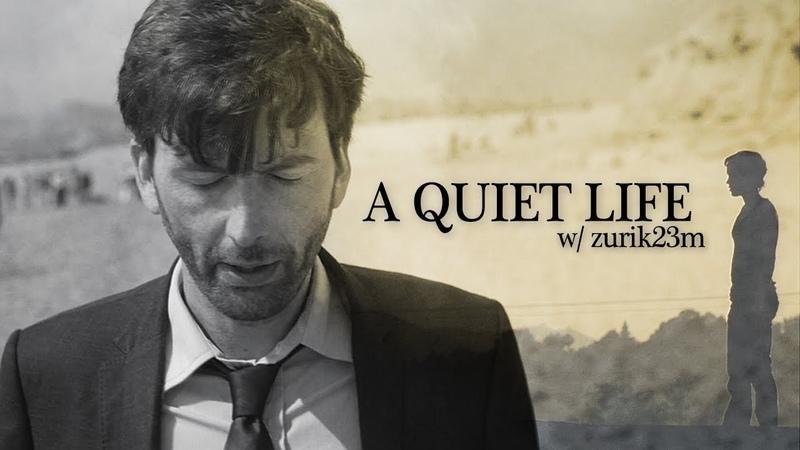 Multifandom || A Quiet Life (collab w/ Zurik23M)