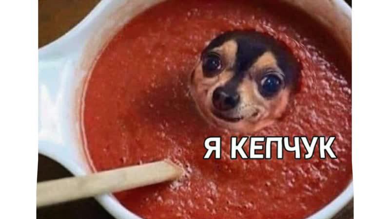 Гадза Кепчука
