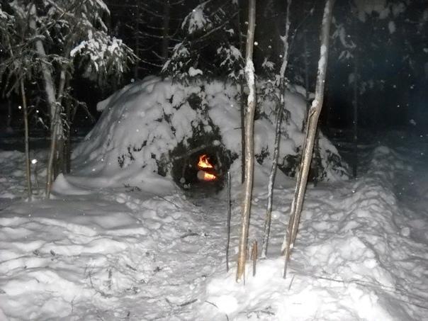 Как выжить в лесу без всего летом, осенью, зимой