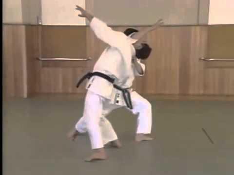 Yokomen Uchi Shomen Irimi Nage 2