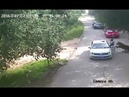 Liveleak Woman pays ultimate price after getting out of car inside tiger exhibit