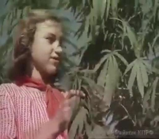 Юные мичуринцы во времена СССР