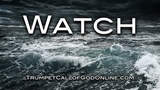 (5) WATCH -