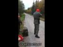 Особенности финской охоты на зайца