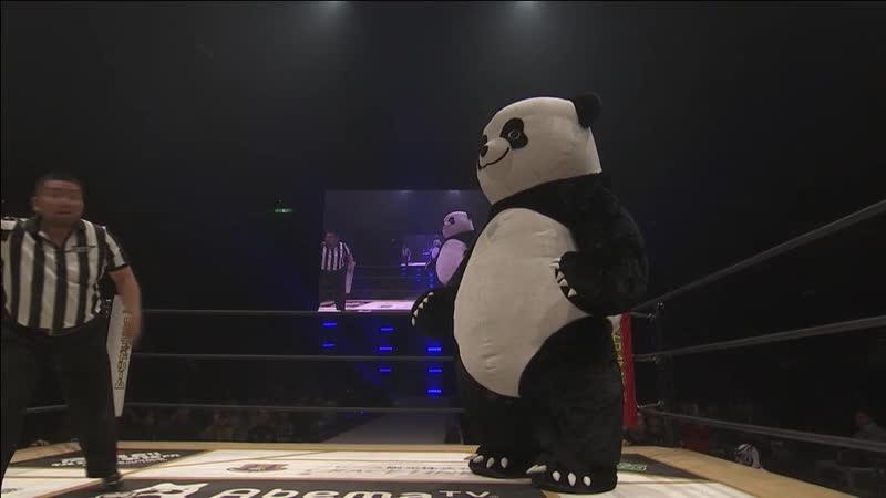 Andreza Giant Panda vs. Super Sasadango Machine (DDT - Ryogoku Peter Pan 2018 ~ Fall Wrestling Culture Festival)