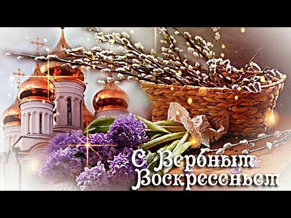 💗Нежное Поздравление с Вербным Воскресеньем